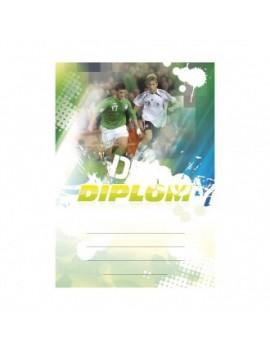 Diplom 6601