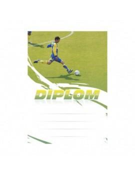 Diplom 6603