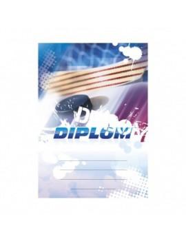 Diplom 6606