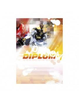 Diplom 6612
