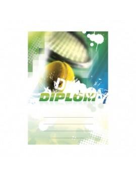 Diplom 6620