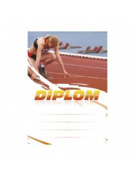 Diplom 6629