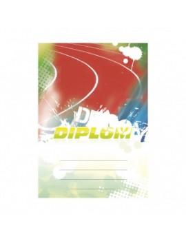 Diplom 6632
