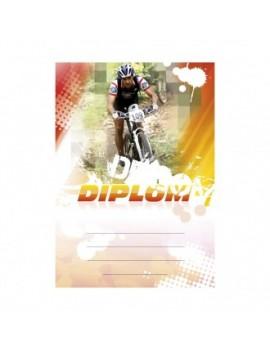 Diplom 6643