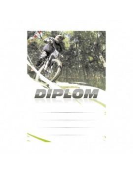 Diplom 6646