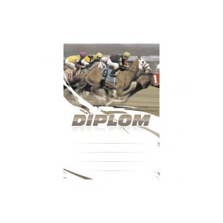 Diplom 6665