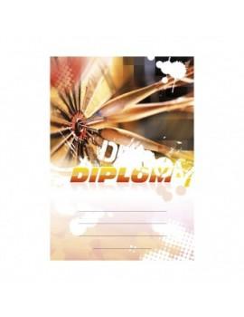 Diplom 6678