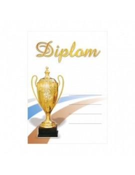 Diplom 6690