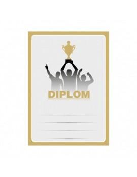 Diplom 6694