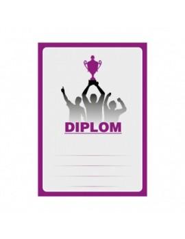 Diplom 6695