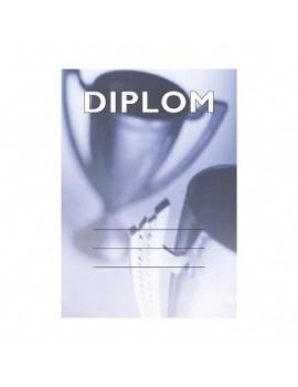 Diplom 6696