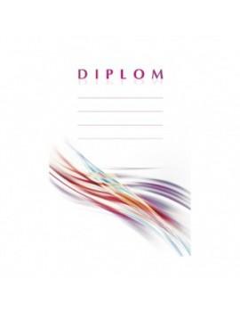 Diplom 6698