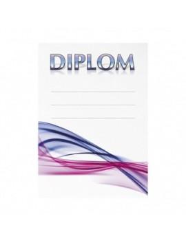 Diplom 6699
