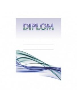 Diplom 6700