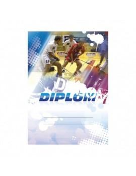 Diplom 6616