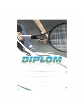 Diplom 6621