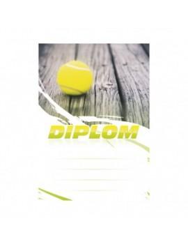 Diplom 6622