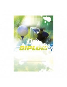 Diplom 6623