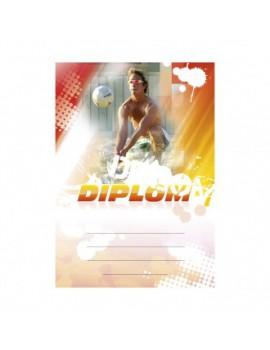 Diplom 6633