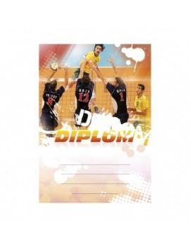Diplom 6634
