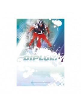 Diplom 6651