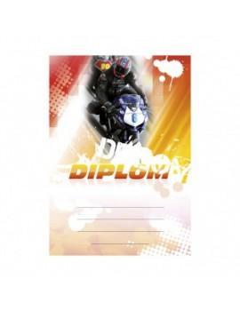 Diplom 6660