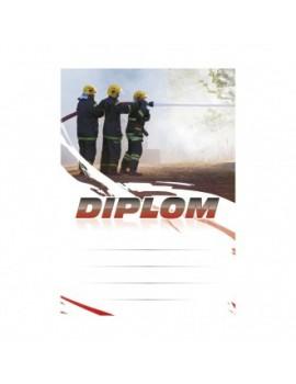 Diplom 6671
