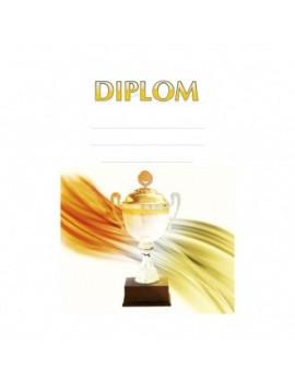 Diplom 6689