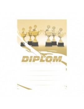 Diplom 6691