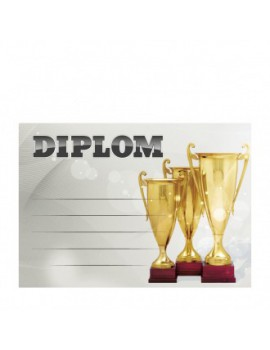 Diplom 6714
